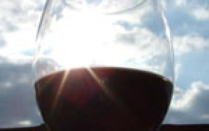 Gata cu prejudecatile despre vinul varsat!