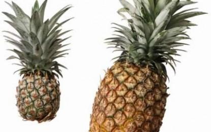 Cum alegem un ananas