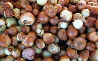 Importăm ceapă, praz și usturoi cu zecile de mii de tone