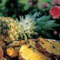 Ananas la gratar cu sos de menta