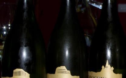 Mai bune și mai puțin bune despre noile vinuri de la Cotnari
