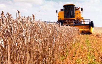 Un proiect românesc destinat micilor fermieri a fost desemnat cel mai bun din Europa