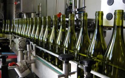 Producția mondială de vin este în creștere, iar România se află printre țările fruntașe