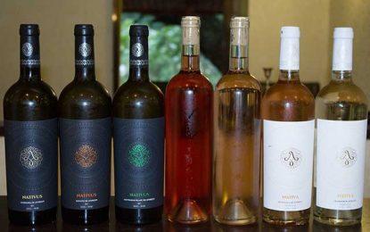 Confirmări și surprize, foarte plăcute, din partea vinurilor de Averești