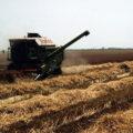 Agricultura Ungaria