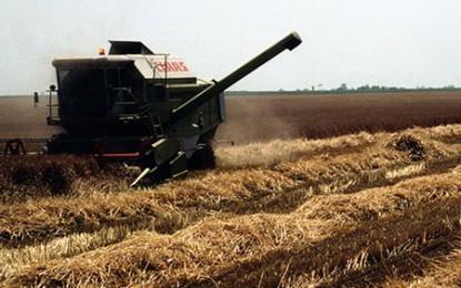 Terenurile agricole ungare vor fi deținute de unguri, fără a încălca legislația UE