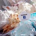 Înghețata cu aroma de facebook
