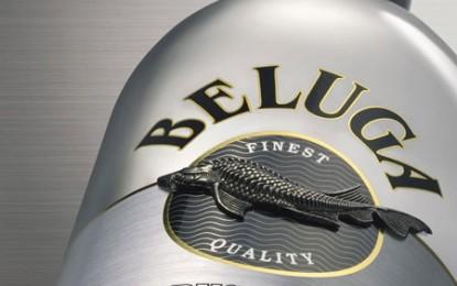 Beți Beluga și nu veți mai fi mahmuri niciodată!