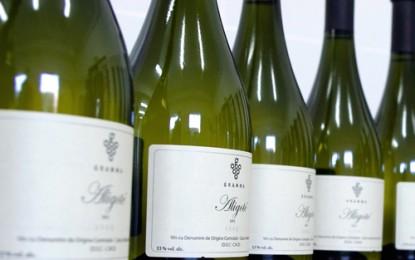 Unde se găsesc vinurile de la Casa Olteanu?