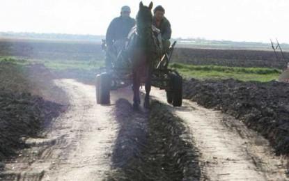 Tabără are deplină încredere în agricultura făcută cu calul