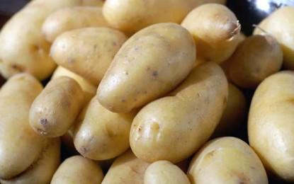 Cartofii reduc tensiunea și nu îngrașă