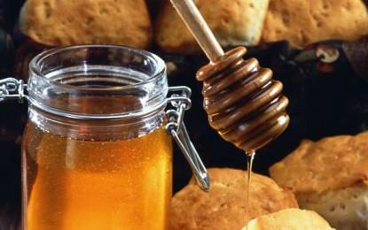Mierea cu urme de OMG poate fi comercializată doar cu autorizație