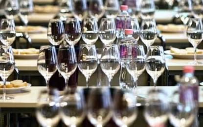 Concurs de vinuri românești la Festivalul Provino de la Cluj