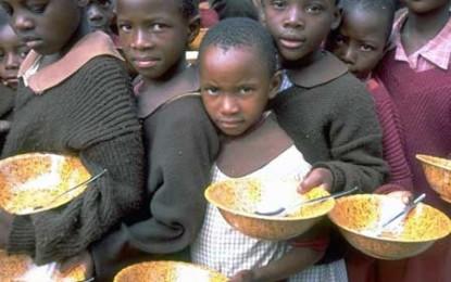 Adevăratele jocuri ale foamei, sau cum generează speculațiile financiare foamete și sărăcie
