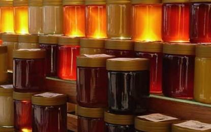 În 5 ani, România va ajunge între primii trei producători de miere ai Europei
