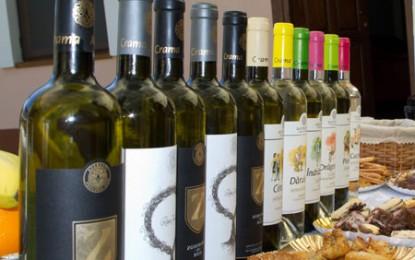 Averești, locul unde tradiția vinului se împletește perfect cu modernitatea