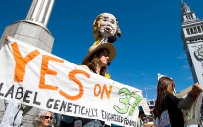 De ce a căzut Prop 37? O poveste despre organisme modificate genetic, bani și minciuni