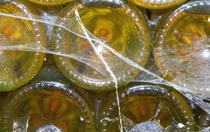 Au românii vreo tradiție în materie de vin?