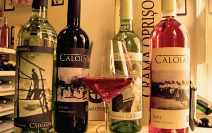 """""""Caloian de primăvară"""" – vinurile Olteniei profunde în stilul de viață contemporan"""