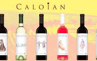 Noua imagine a gamei de vinuri Caloian de la Crama Oprișor